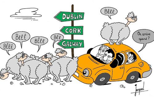 Silc passeport pour le monde page 4 - Image mouton humoristique ...